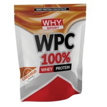 WPC 100% Whey Why Sport