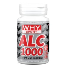 Acetil L-Carnitina ALC 1000 Why Sport