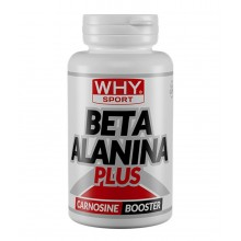 Beta Alanina Plus Why Sport