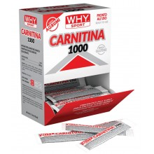 CARNITINA 1000 Monodose Why Sport