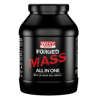 Forged Mass 1Kg Why Sport